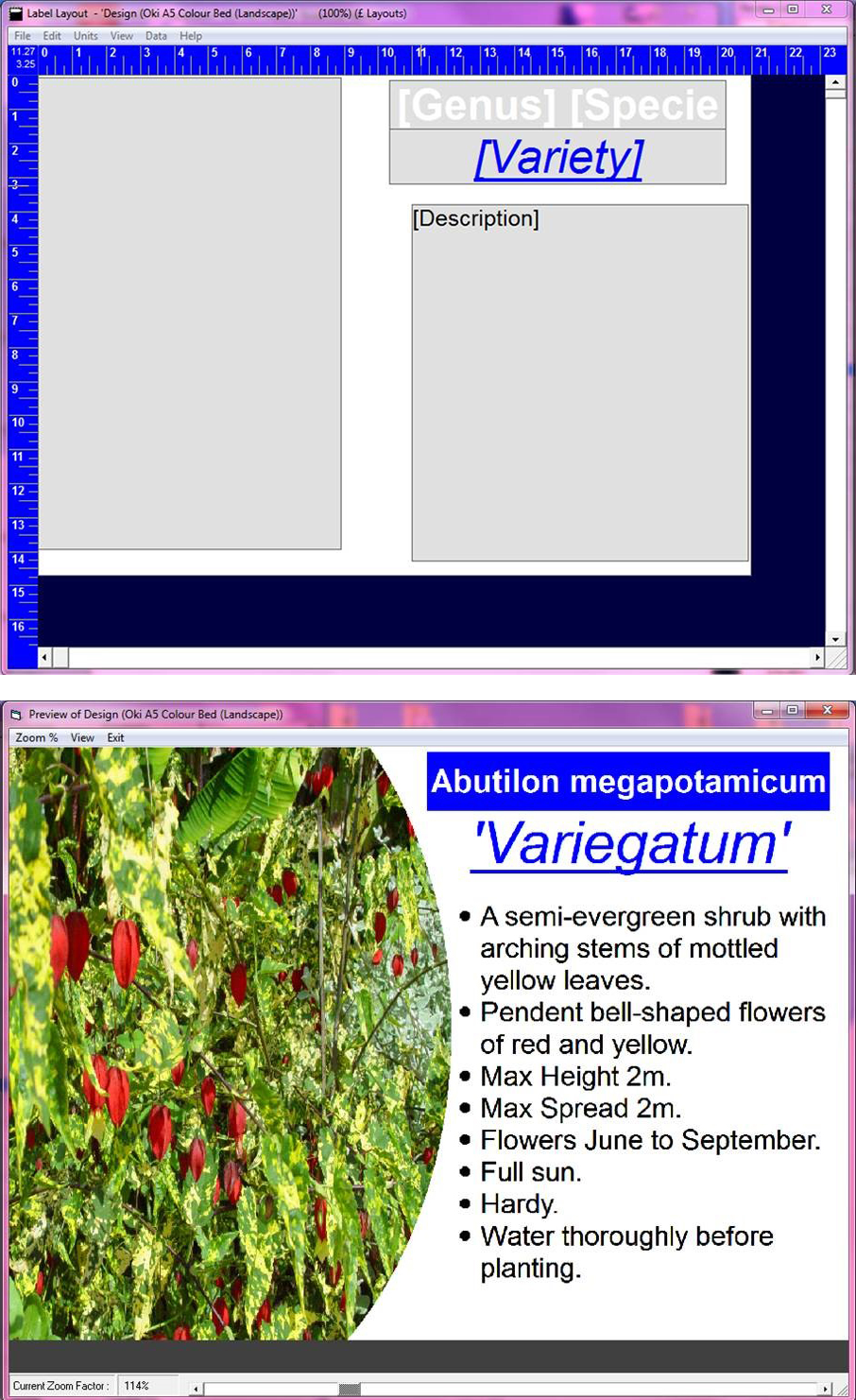 HLS screenshot examples showing print preview and template